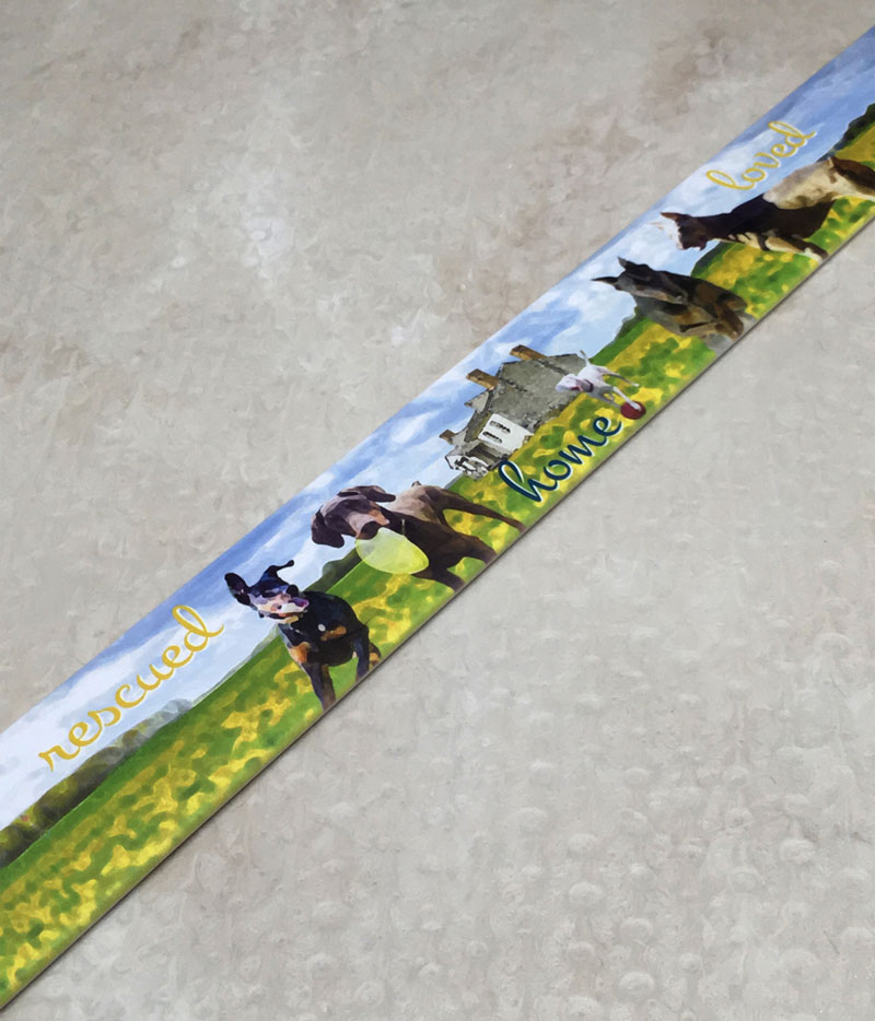 Dog collar that has doberman on it with a house and field of flowers