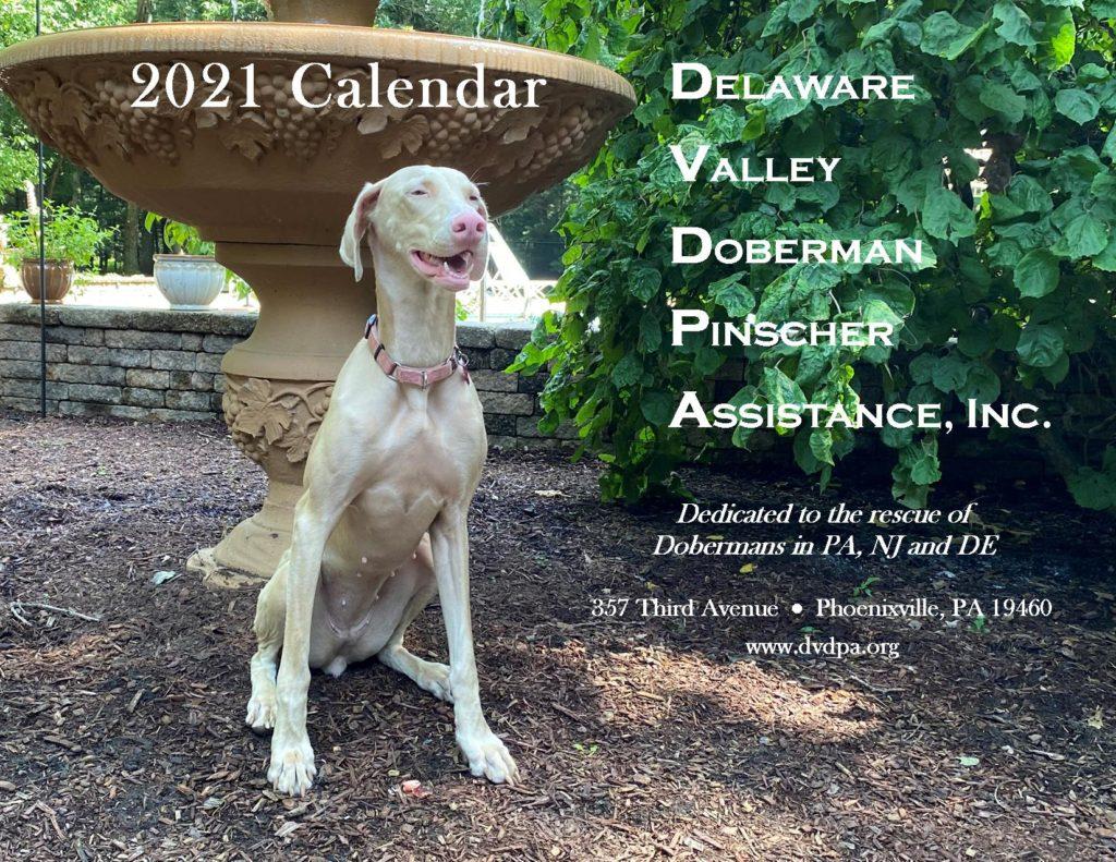 2021 DVDPA Calendar